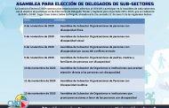 HACEN LLAMADO A LAS ORGANIZACIONES ADSCRITAS AL CONADI PARA PARTICIPAR EN EL PROCESO ELECTORAL 2020