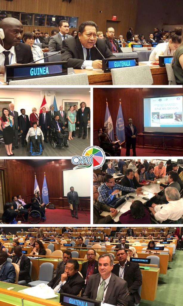 EL CONADI PARTICIPA EN LA ONU