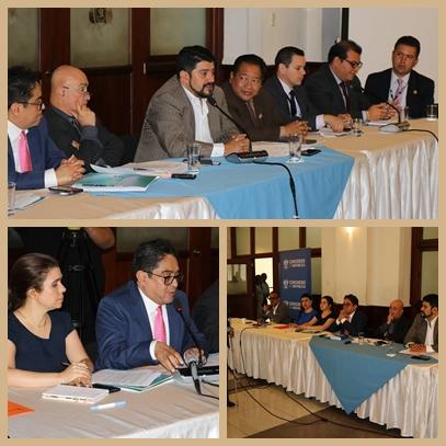 Diputados de la Comisión de derechos Humanos abordó el tema de personas con discapacidad institucionalizadas